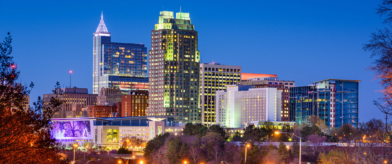 View of Raleigh